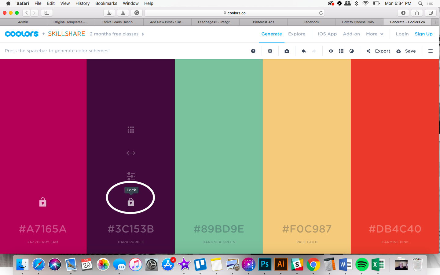 color selection for bloggers