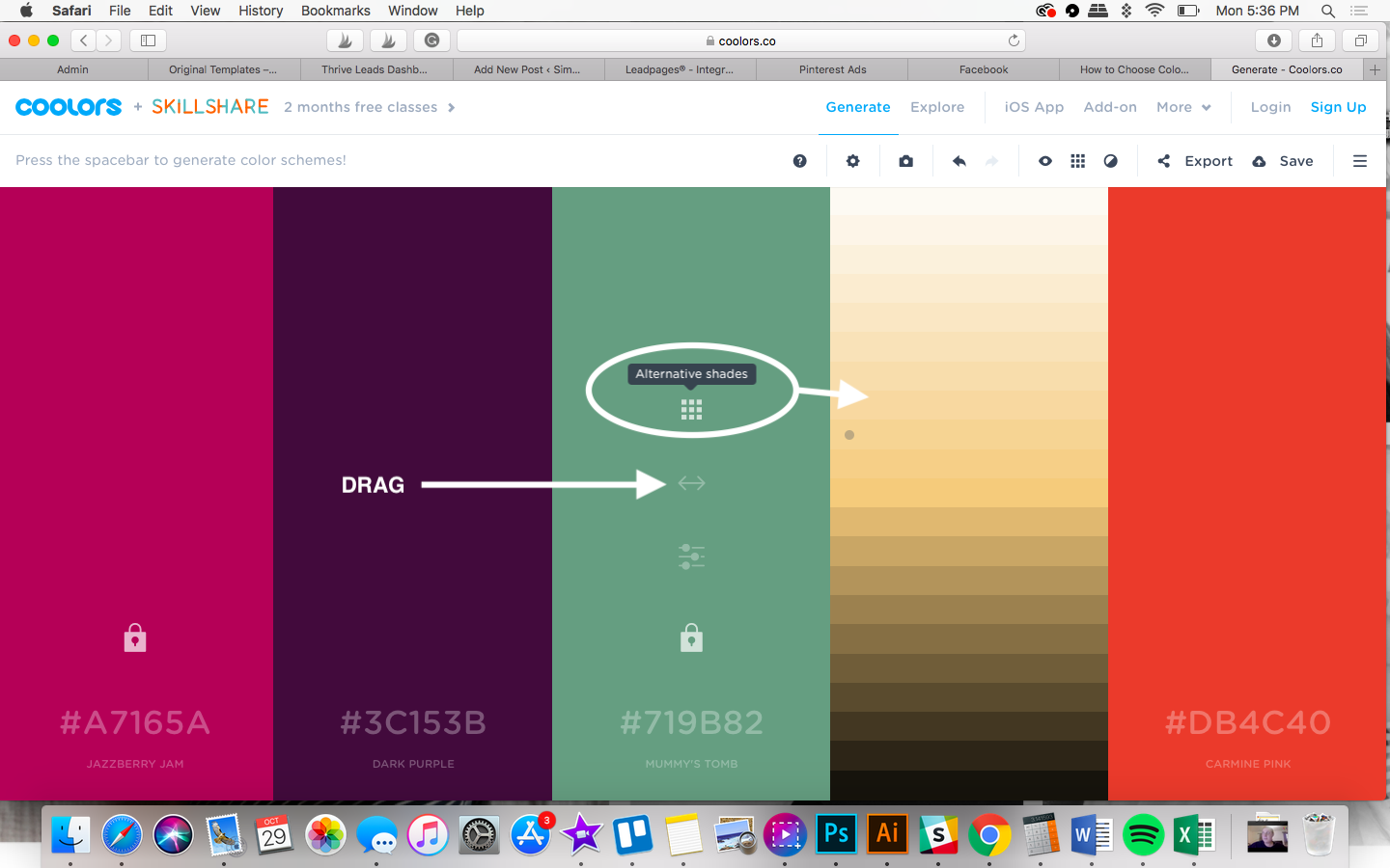 using a color generator to select your brand palette